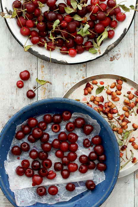 Sour Cherry Scones Bakers Royale 211