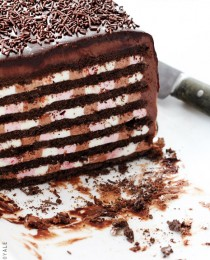 Neapolitan Icebox Cake by Bakers Royale 210x260