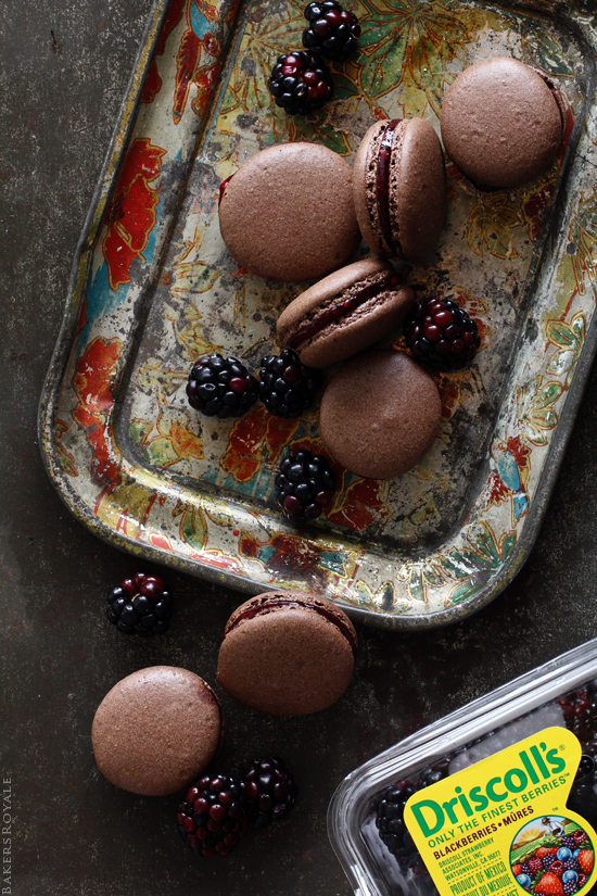 Chocolate Blackberry Macarons with Bakers Royale