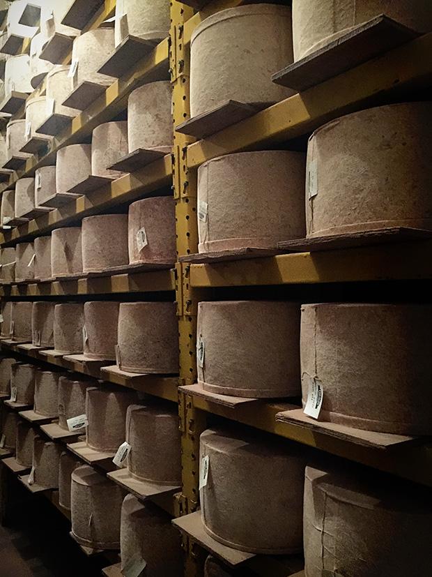 Bandaged Cheese